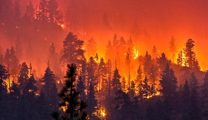 Islamic State: California fires Allahs punishment for you. And in shaa Allah, you will see more fires.