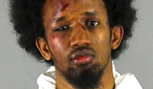 "Minnesota: Muslim who went on ""Jihad in the way of Allah"" stabbing spree entered US with foreign relatives"
