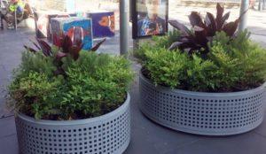 "Australia: Victoria installs permanent anti-jihad bollards disguised as planters, set to study ""Islamophobia"""
