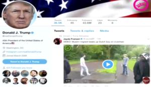 "Filmmaker Michael Hansen (""Killing Europe"") shows how Trump tweet is right on Muslim migrant violence in Europe"
