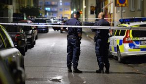 Swedish government to ban websites that reveal ethnic origin of crime suspects