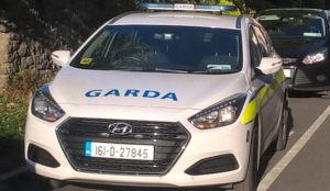 Ireland: Muslim migrant stabs three, killing one, attacks cops with iron bar, cops search for motive