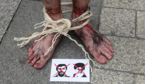 The Islamic Republic of Iran has now tortured 11 freedom demonstrators to death