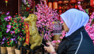 Malaysia: Chinese Year of the Dog images removed to avoid offending Muslims