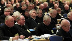 U.S. Catholic bishops to Americans: Drop dead