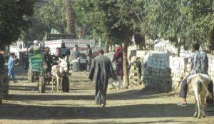 Ramadan in Egypt: Muslims screaming Allahu akbar pelt Christians with bricks and stones, loot their properties