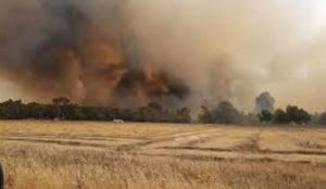 "29 fires erupt as ""Palestinian"" arson jihad ‎continues to scorch southern Israel"