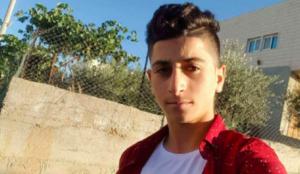 Palestinians claim Muslim who murdered Israeli was the real victim