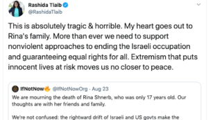 """Tlaib blames jihad murder of Israeli teen on """"Israeli occupation"""""""