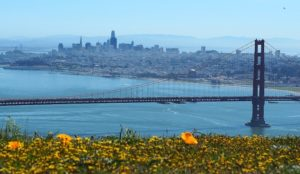 Inside Mosques: San Francisco, California
