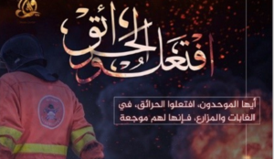 """Islamic State encourages Muslims to set forest fires in US and Europe in """"new way of waging jihad"""""""