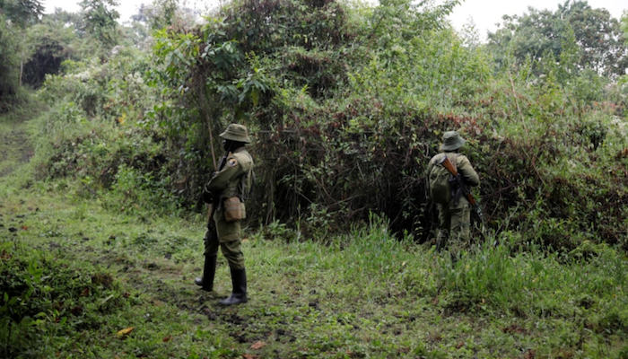 https://www.jihadwatch.org/wp-content/uploads/2020/11/Congo-soldiers-700x400.png