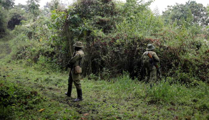https://www.jihadwatch.org/wp-content/uploads/2020/11/Congo-soldiers.png