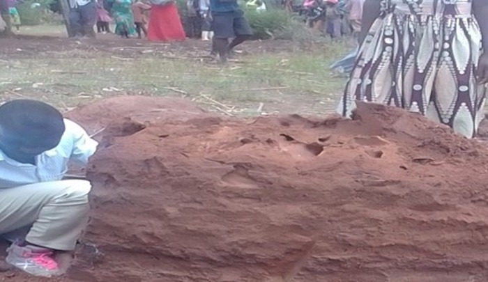 https://www.jihadwatch.org/wp-content/uploads/2021/08/Ant-mound-where-body-of-Saban-Sajabi-was-found-in-Kabula-Uganda.-Morning-Star-News.jpg